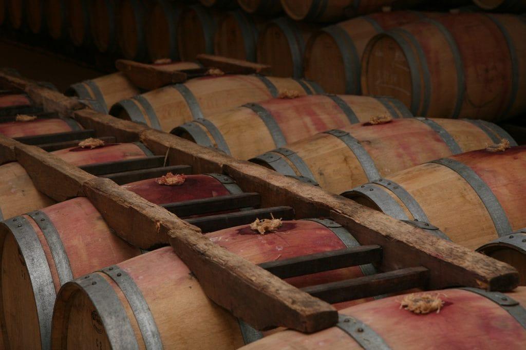 Typowe winnice w Bordeaux fot. pixabay