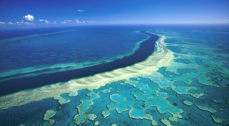 Lizard Island – miejsce na wypoczynek tuż przy Wielkiej Rafie Koralowej
