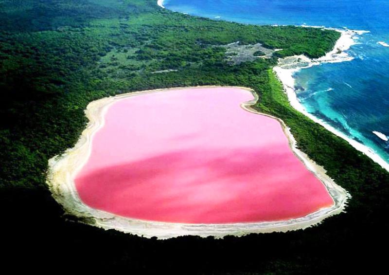 Jezioro Hillier o niesamowicie różowej barwie