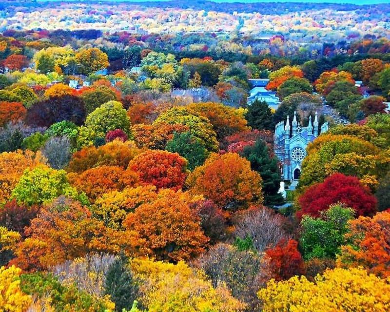 Mount Auburn, Stany Zjednoczone