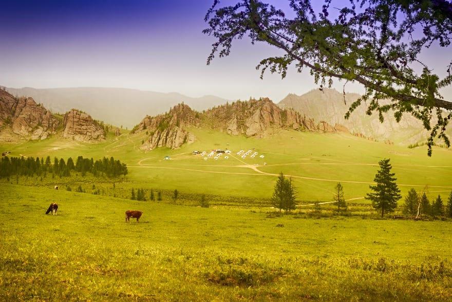 oboz-jurt-w-narodowym-parku-terelj-aina-travel
