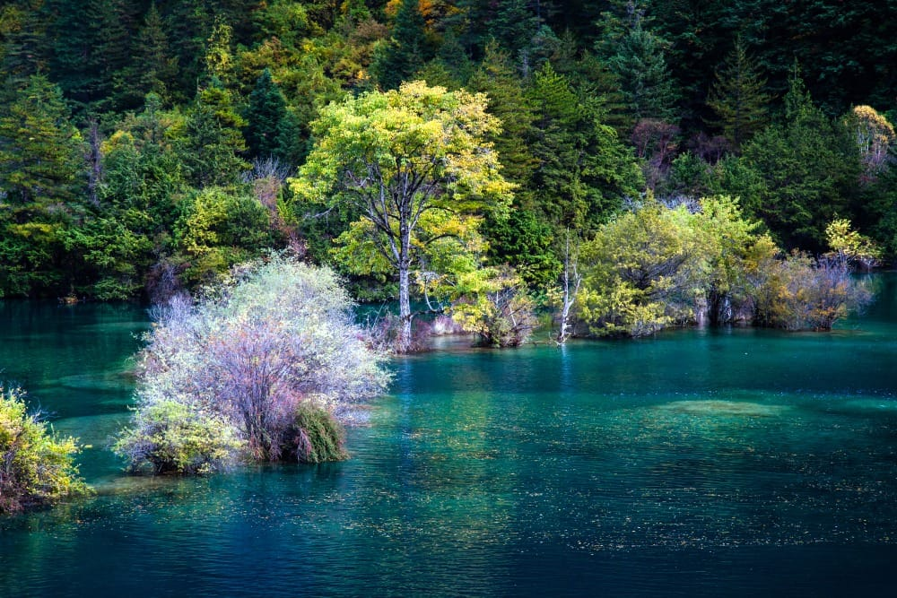 Narodowy Park Jiuzhaigou,Chengdu, Chiny