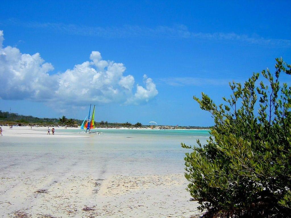 Cayo Coco na Kubie to raj na ziemi.