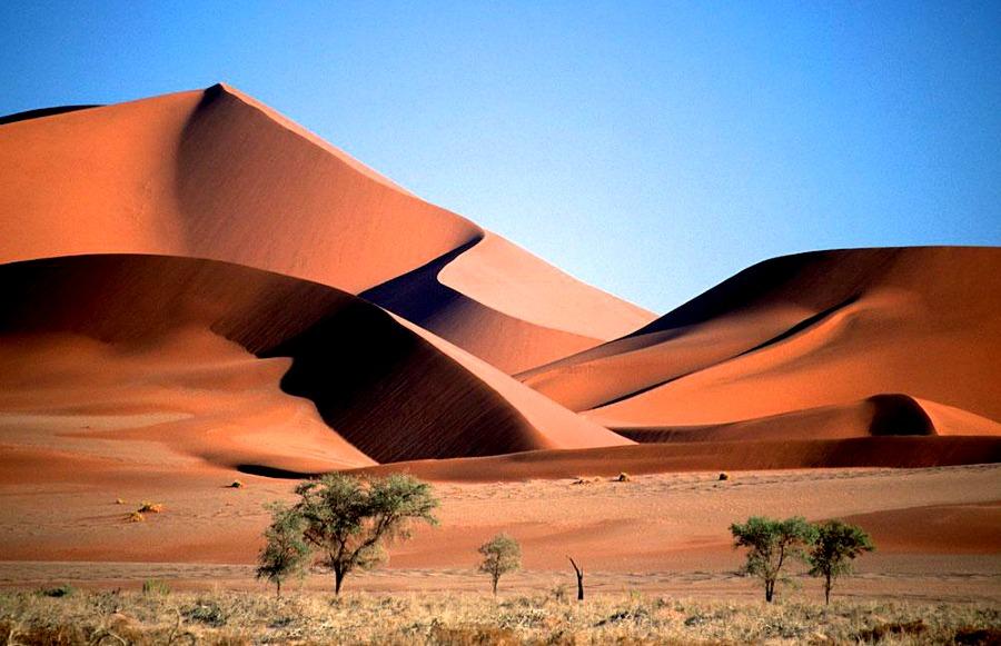Mieszkańcy Namibii na pewno nie narzekają na brak piasku.