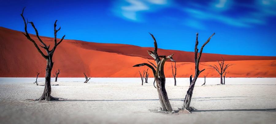 Pustynie Namibii należą do najpiękniejszych na świecie.