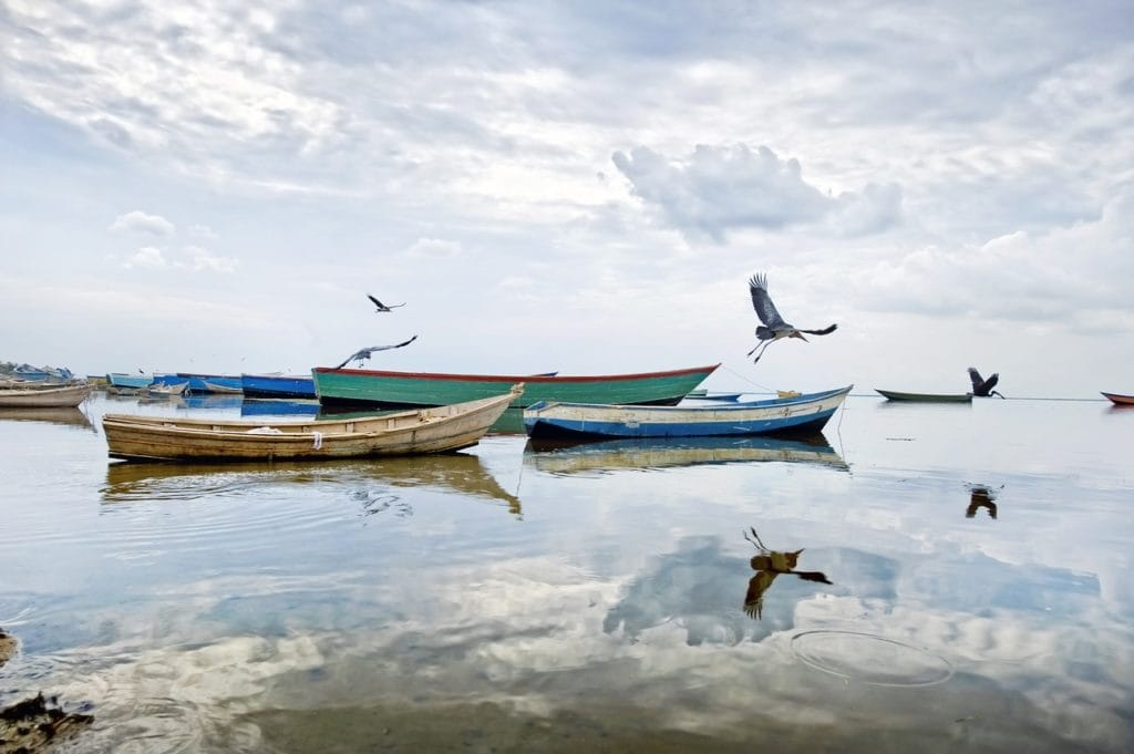 Jezioro Albert fot. pixabay