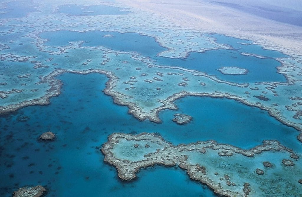 Wielka Rafa Koralowa fot. pixabay