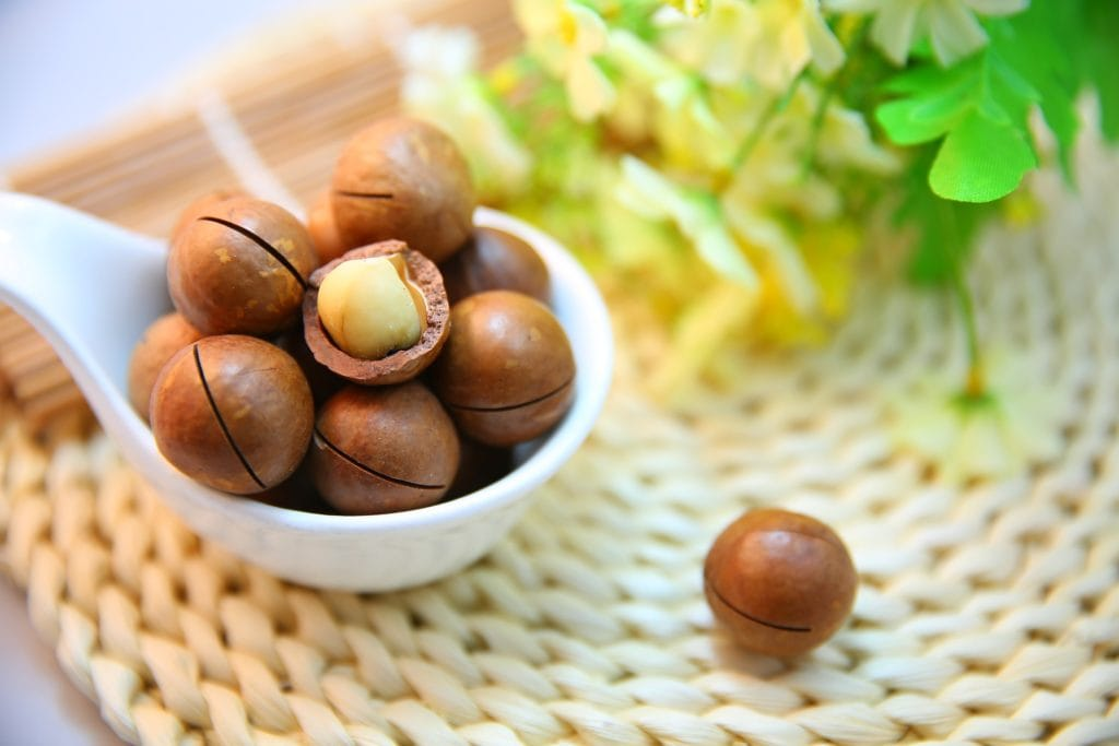 Orzechy macadamia fot. pixabay