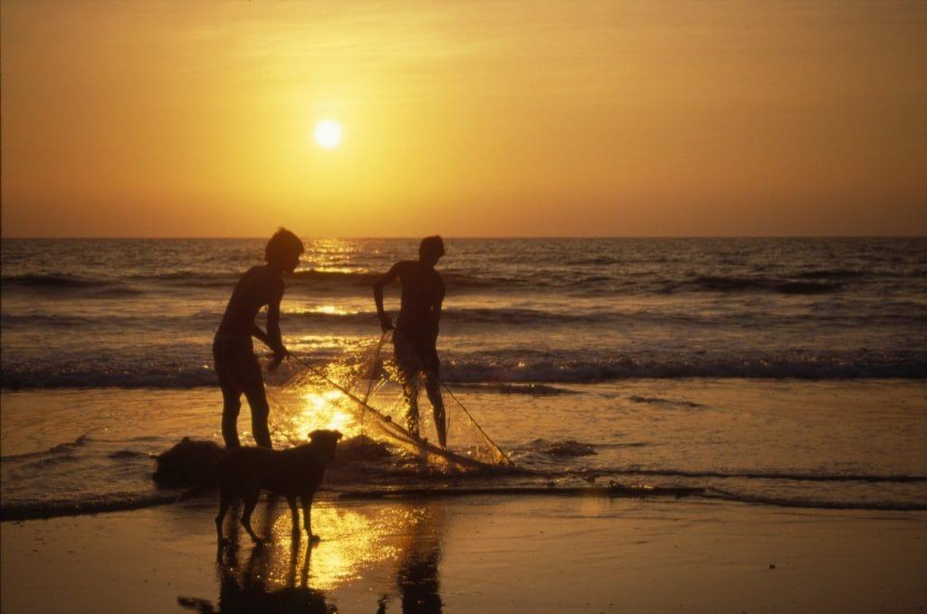Goa fot. pixabay