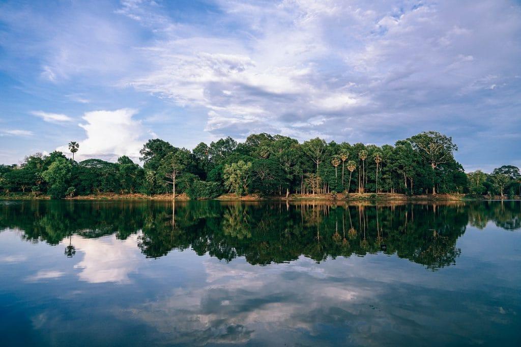 Uważaj na zaminowane pola i lasy fot. pixabay.com
