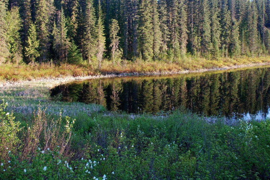 Jezioro Alicji w Parku Narodowym Wells Gray Provincial