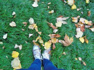 jesienna-znizka-na-posrednictwo-aina-travel